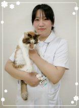 動物看護師 吉岡涼子